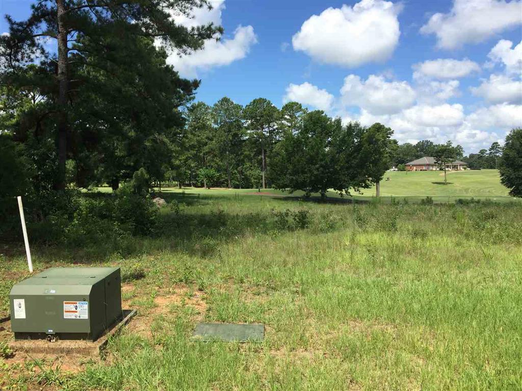Lot 60 River Ridge , Hawkinsville, GA