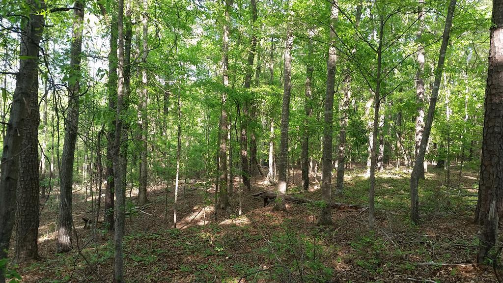 Lot 2B Highway 57  Macon GA