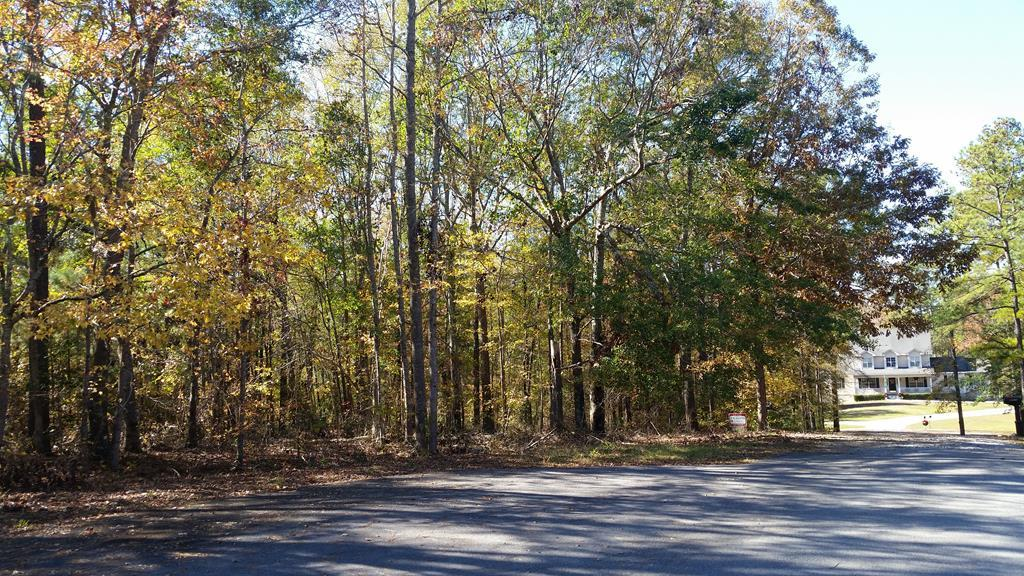 Lot 1 Hidden Hills Court, Macon, GA 31217