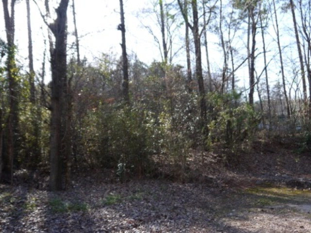 4604 Arkwright Road, Macon, GA 31210