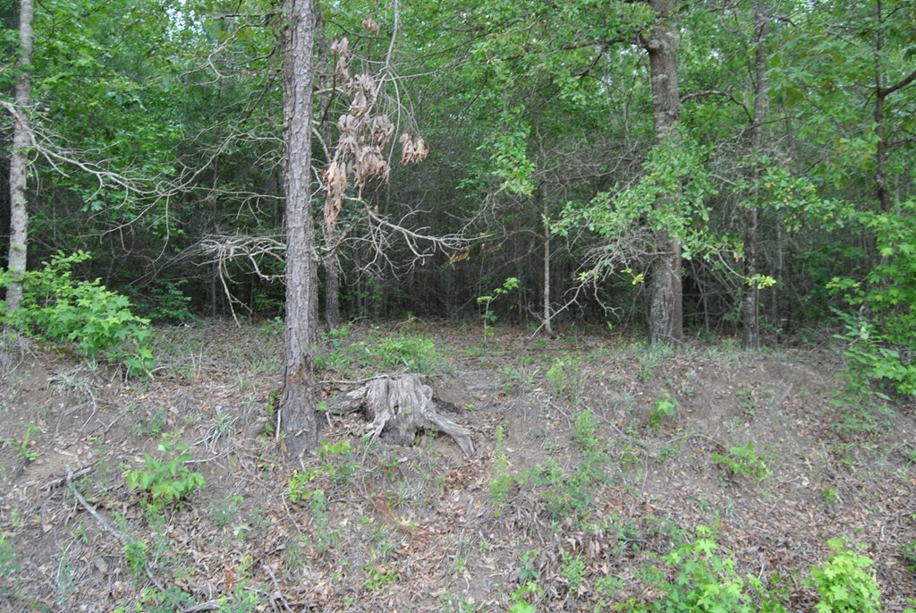 8.88acre Parker Hill Road, McIntyre, GA 31054