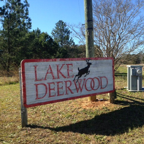 Lot 27 Deerwood Circle, Roberta, GA 31078