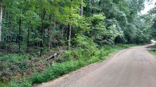Lot #5 Childs Road, Gray, GA 31217