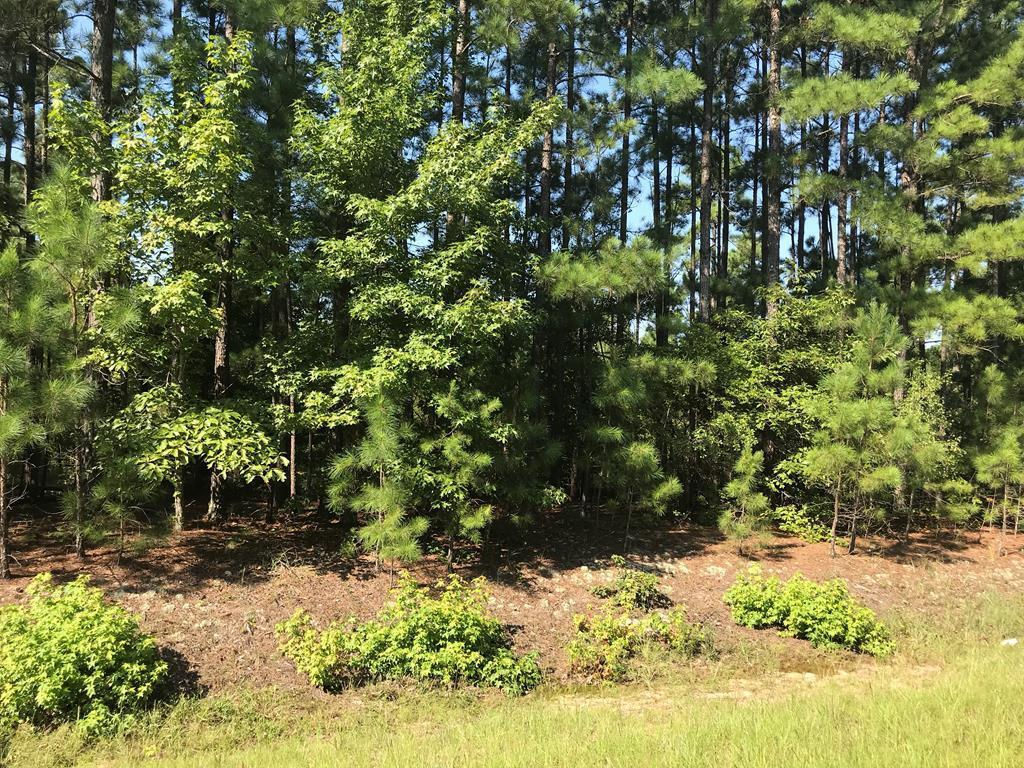 LOT 65 Etheridge Road, Haddock, GA 31033