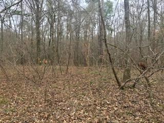 0 Turkey Run Lot 7 , Juliette, GA 31046