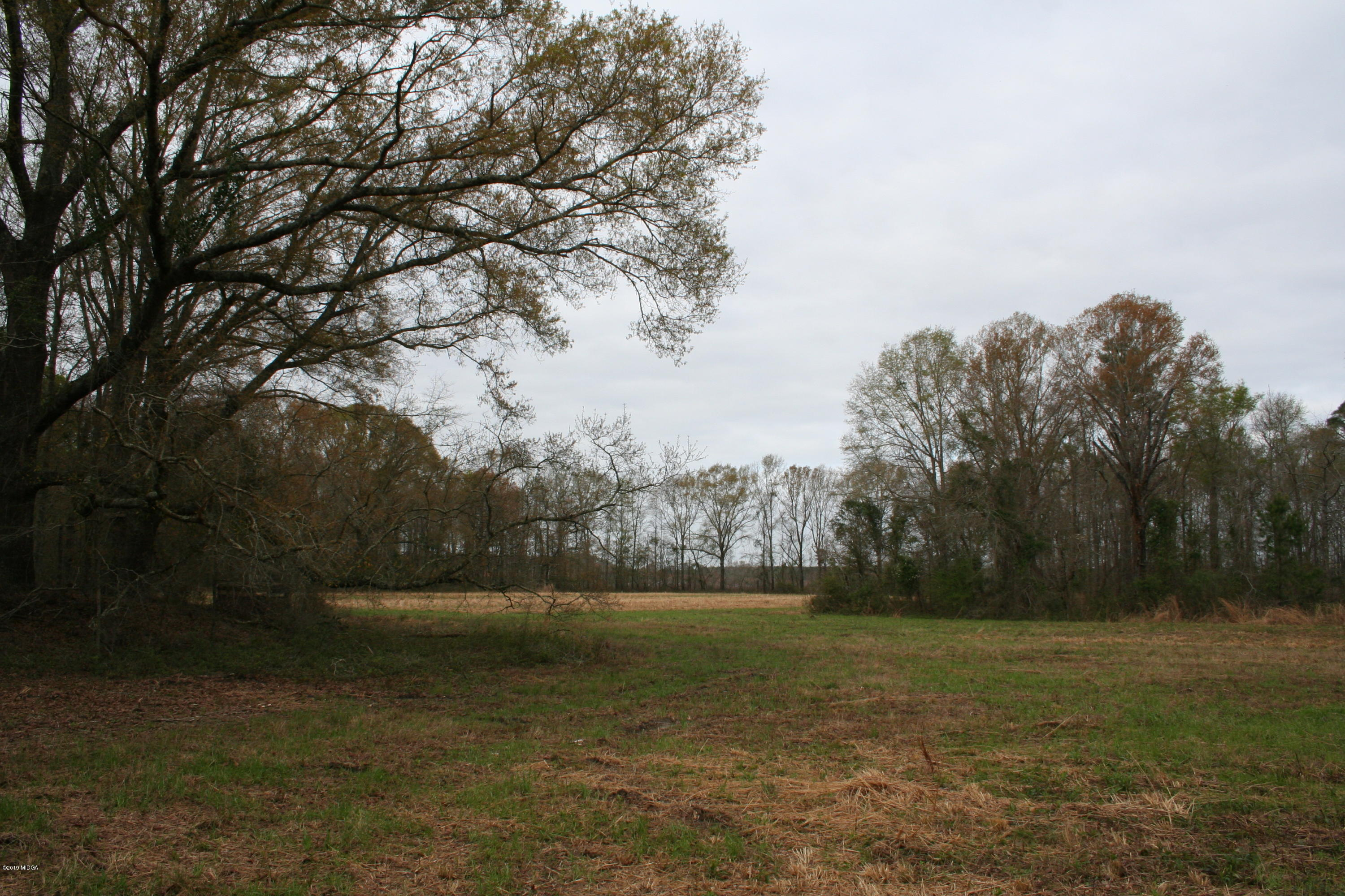 0 Moree Lamb Road , Vienna, GA 31092