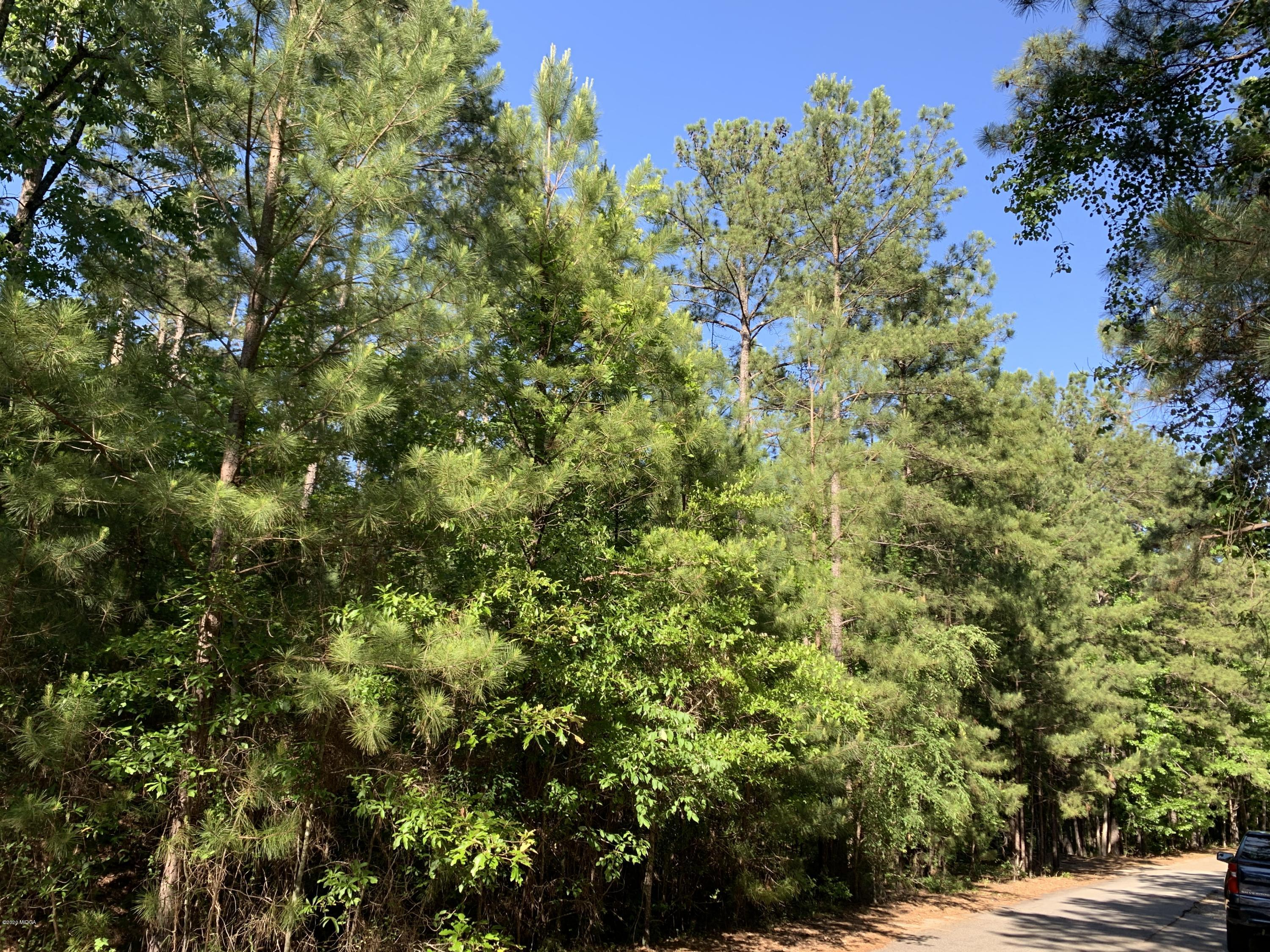 Lot 20 River Forest Drive, Macon, GA