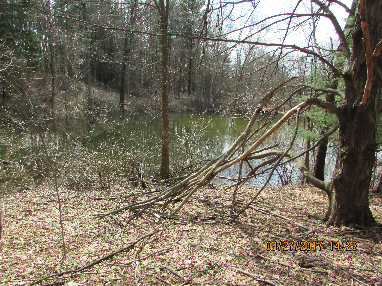 0 Old Lansing Rd - Pond also - 3