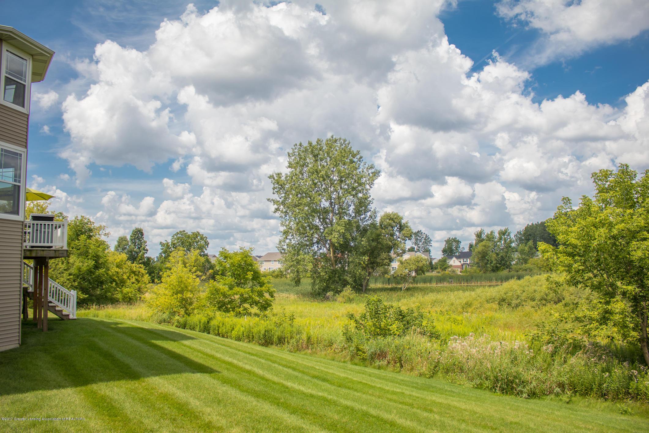 2550 Lupine Ct - Yard View - 82