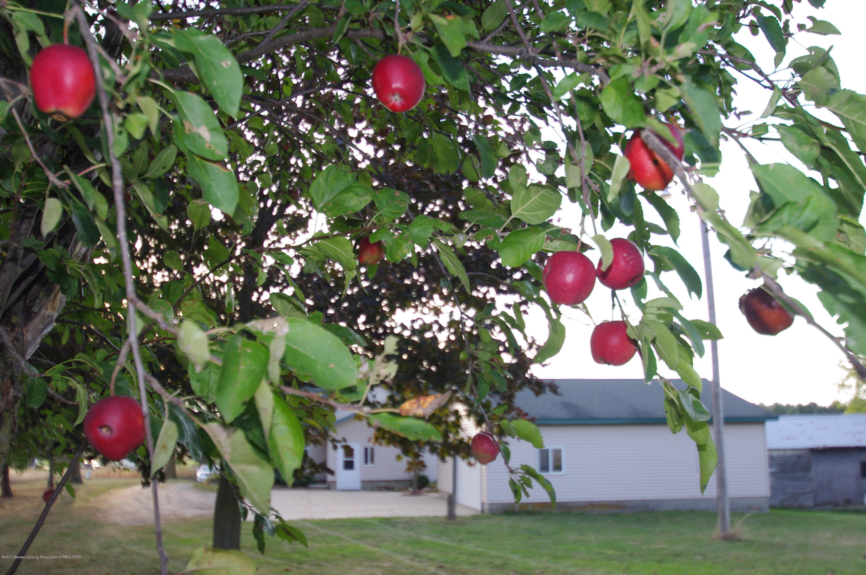 5545 S Krepps Rd - Apple Tree - 44
