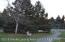 3820 Bush Gardens Lane, Holt, MI 48842