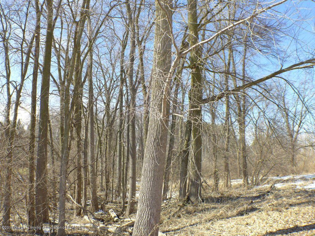 13819 Mead Creek Rd - P1160109 - 32