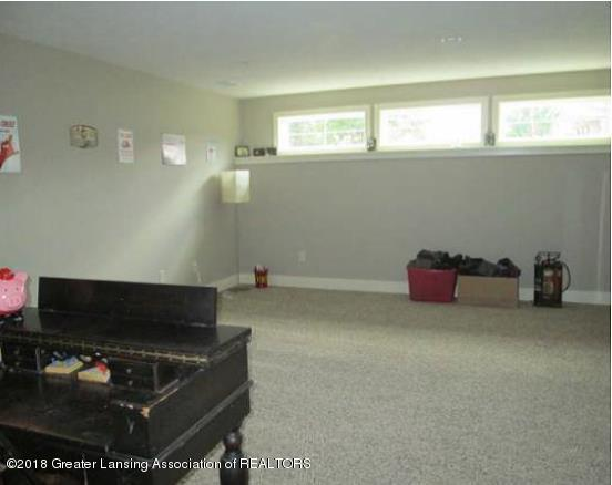 10604 Knockaderry Dr - 19 - Daylight Bsmt - family room  view # - 19