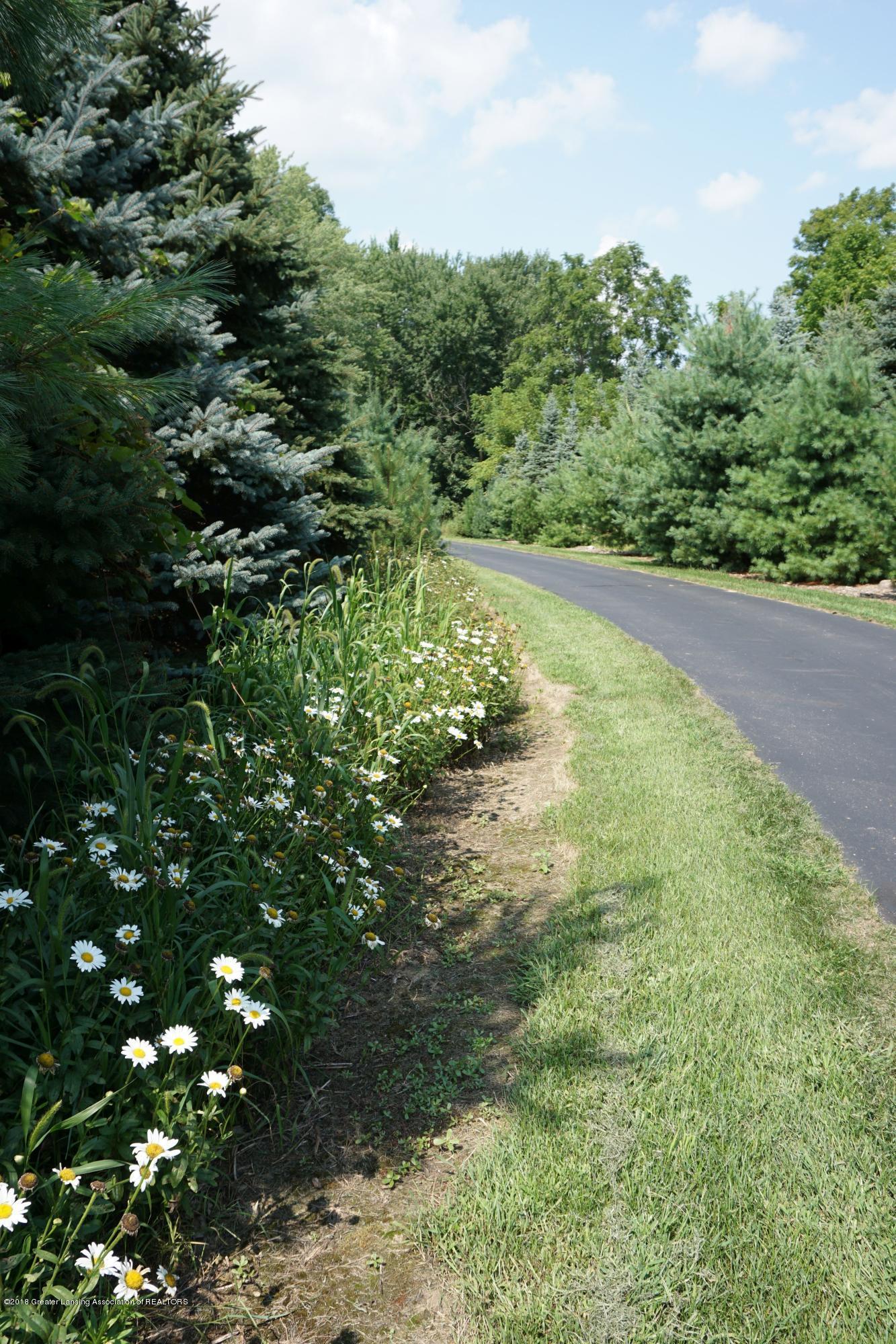 5699 Harper Rd - Drive.flowers - 44