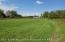 1623 Grovenburg Road, Holt, MI 48842