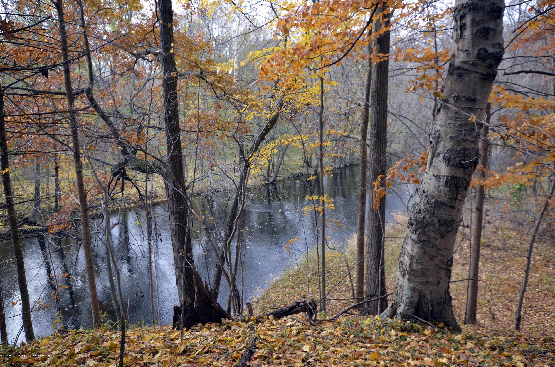 4045 Van Atta Rd - 4045 Van Atta Trees & River - 48