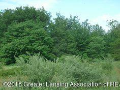 Vl Carlisle Hwy - Wooded vacant land - 1