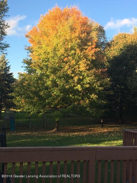 1677 Barry Rd - Autumn views - 21