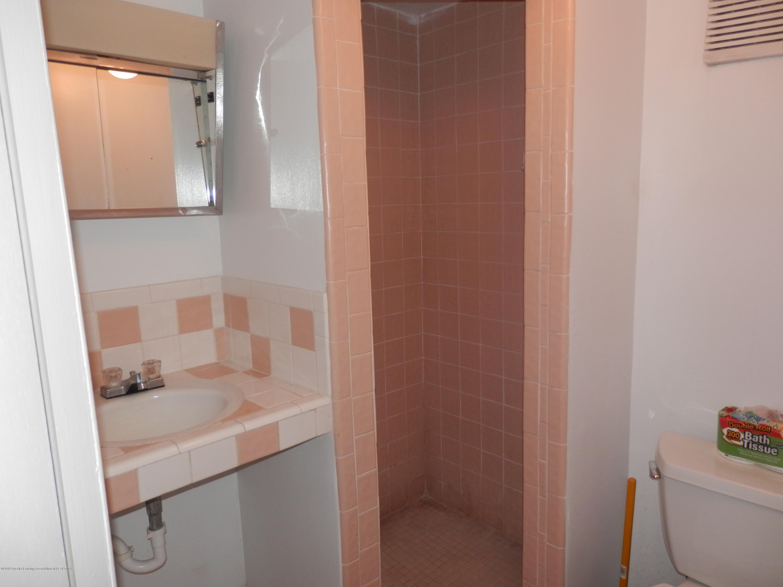 352 Collingwood Dr - Basement bath area - 20