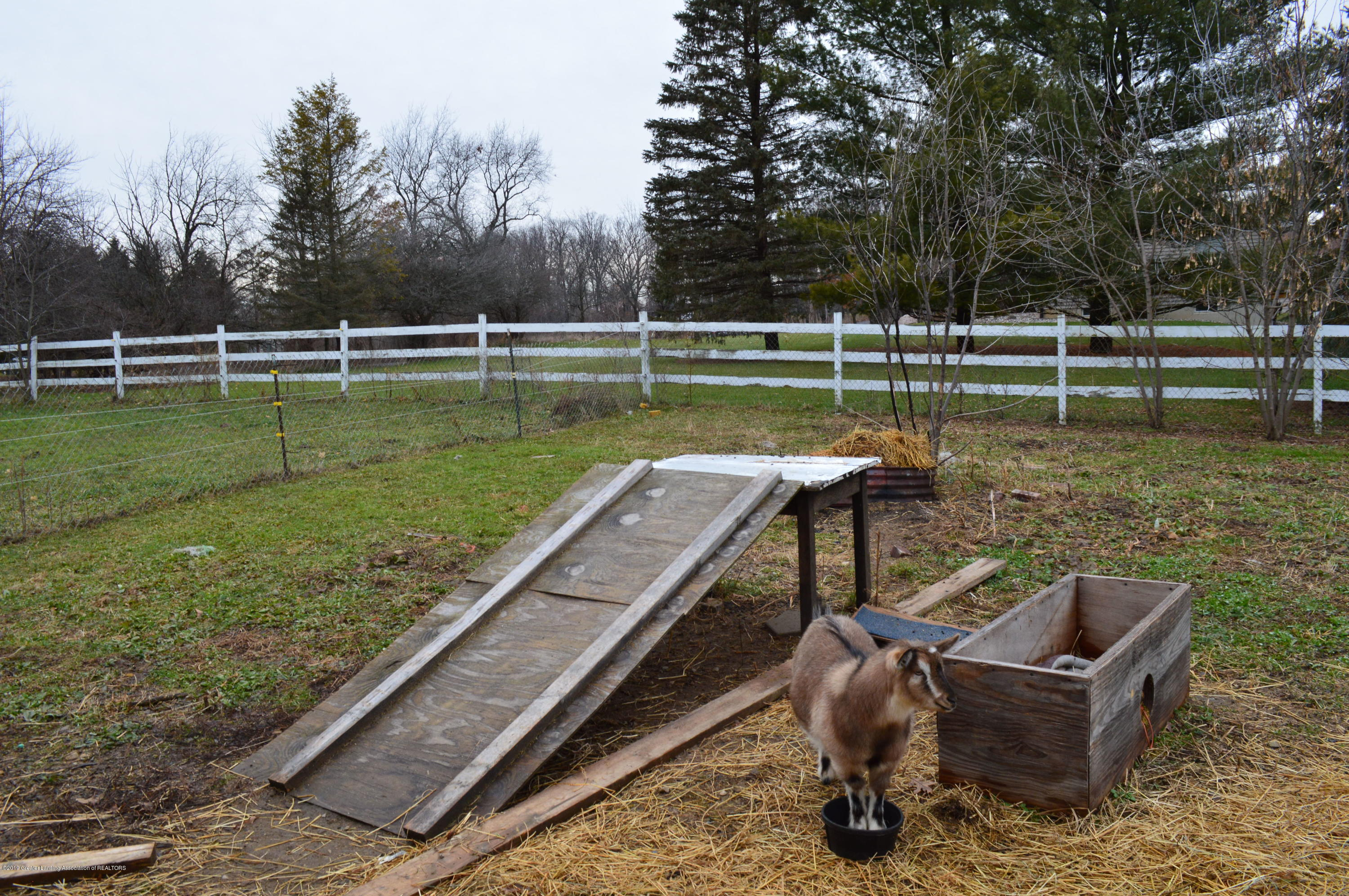 3811 Gale Rd - Goat Play Yard - 36