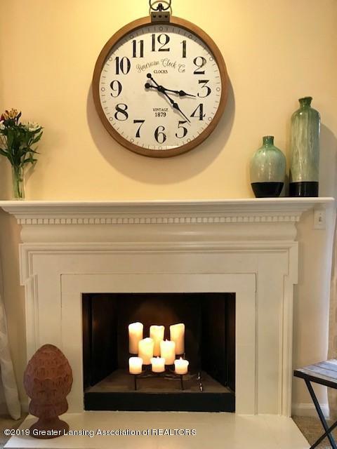 1305 Glenmeadow Ln - Fireplace - 3