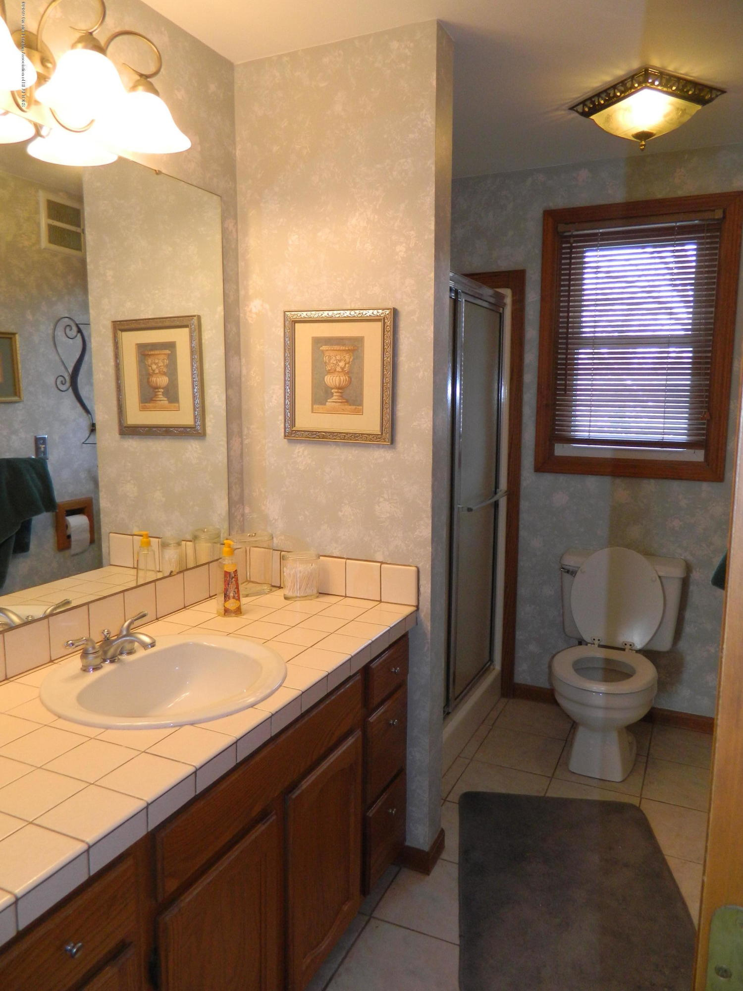 1560 Birchwood Dr - Bathroom - 14