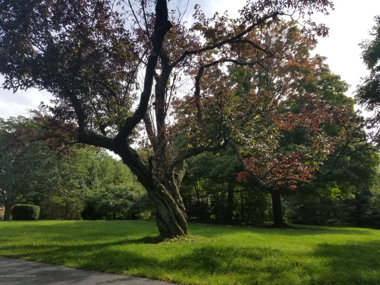 11900 Eden Trail - Front Yard - 11