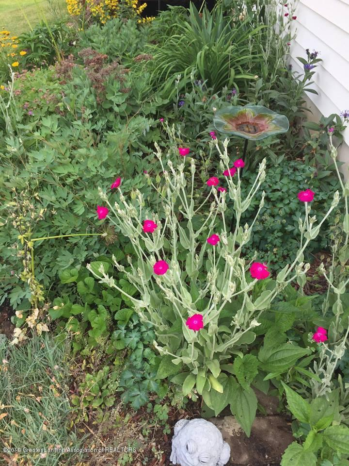 8918 Woodbury Rd - Flower Bed - 19