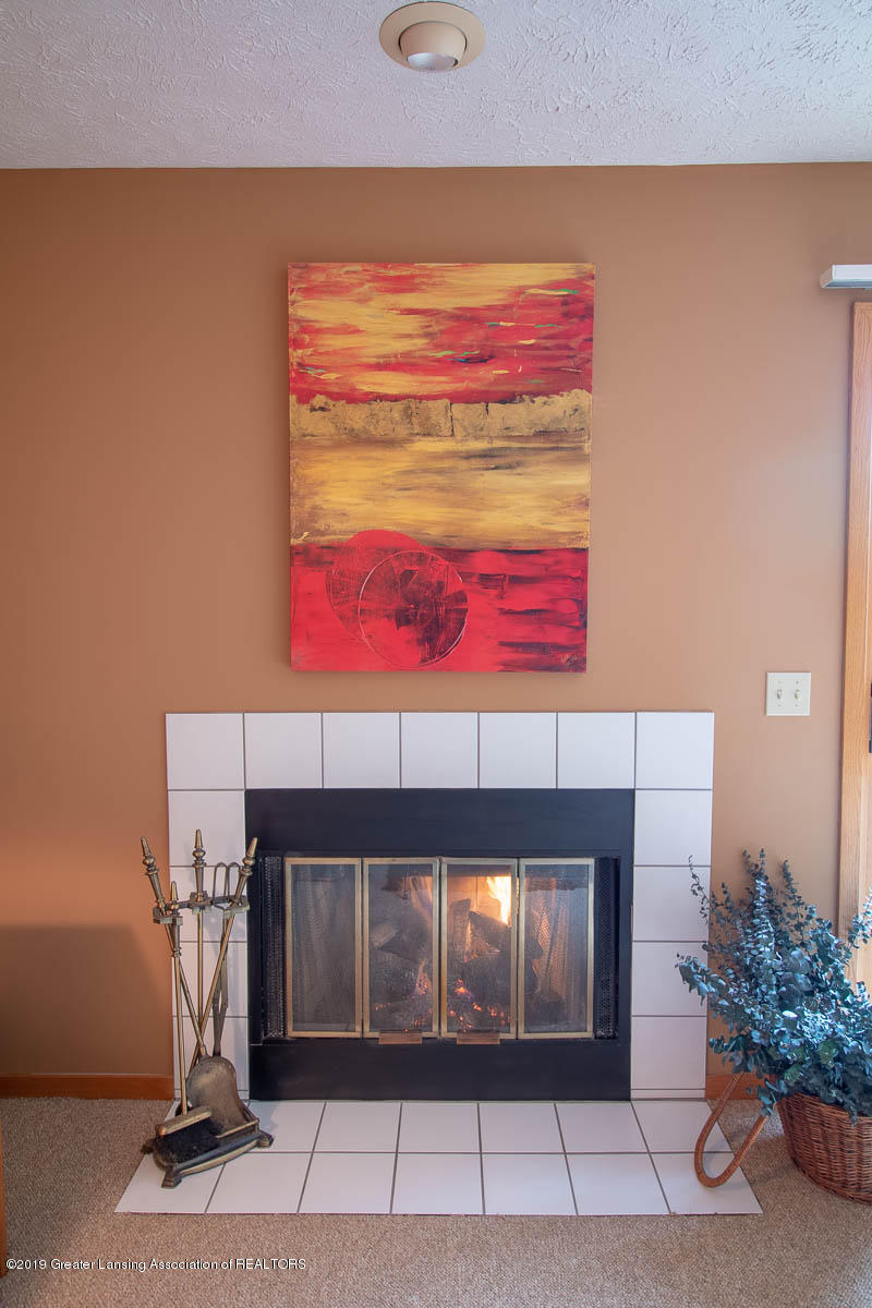 2445 Emerald Lake Dr 117 - Fire Place - 15