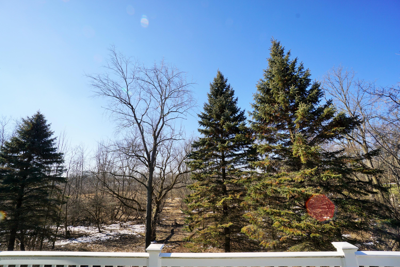 5528 Silverleaf Ct - Back Yard View - 43