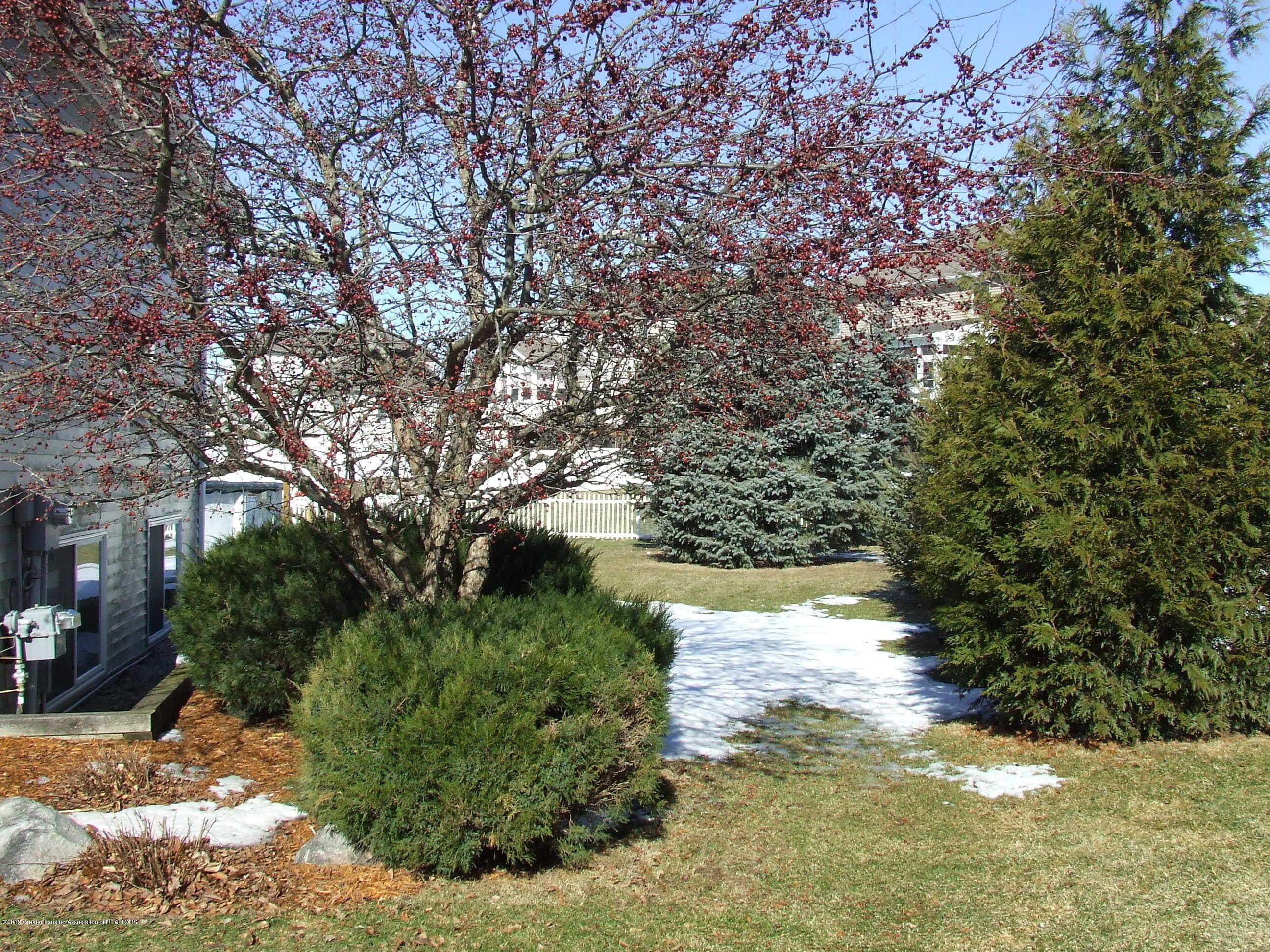11641 Millstone Dr - Yard - 20