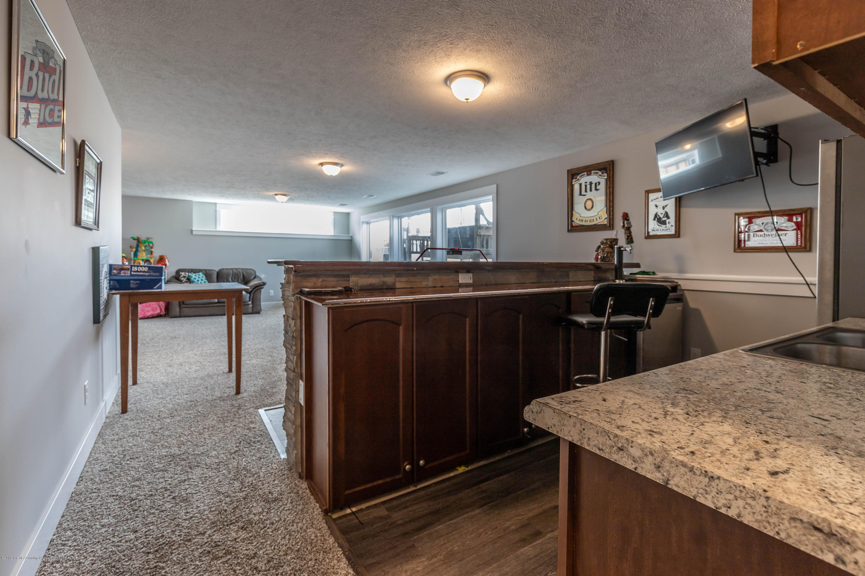 10565 Saddlebrook Dr - lower level kitchen - 31