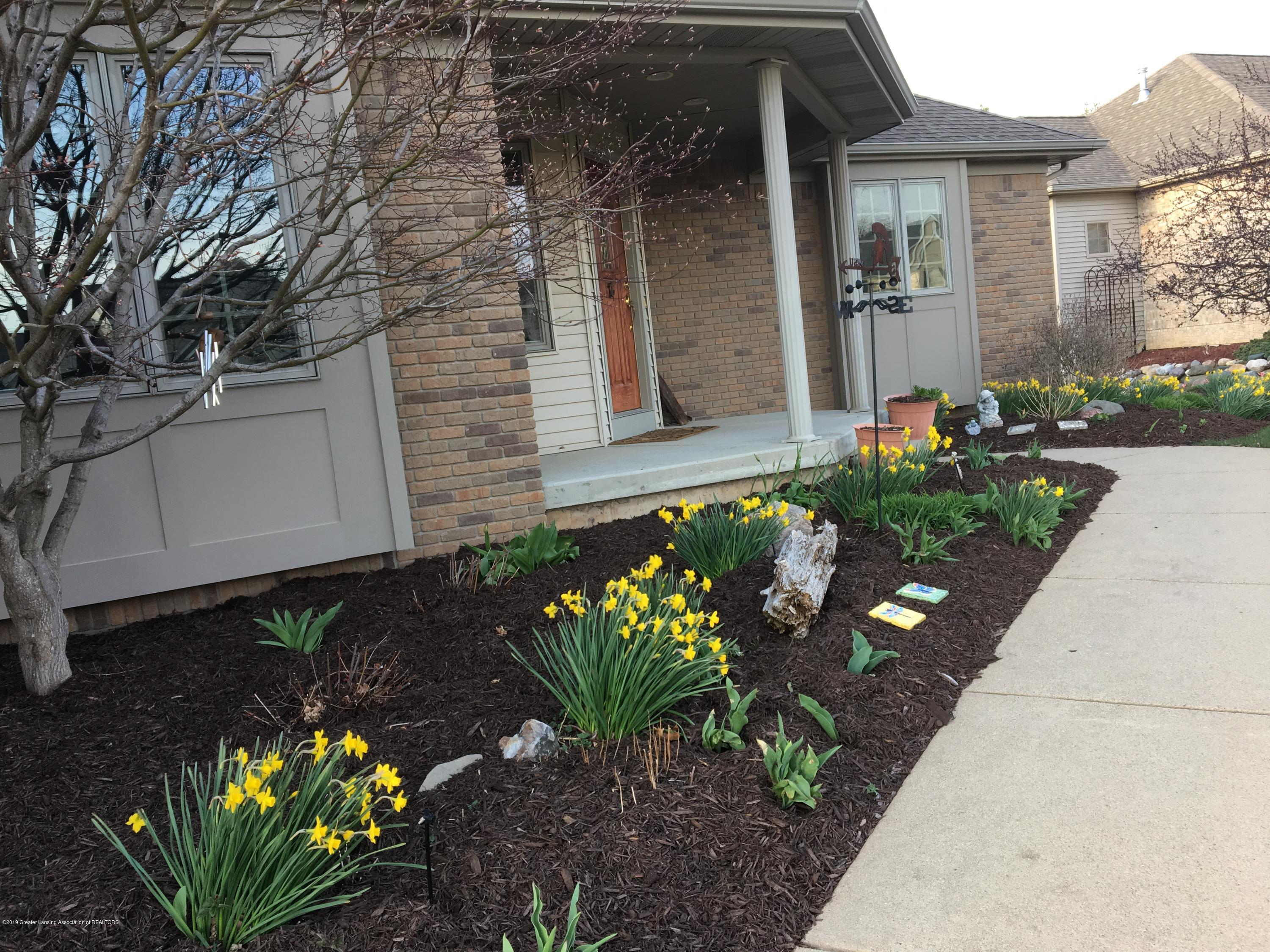 7387 Mallow Ln - 2017 04-15 Front Yard & flowers (1) - 50