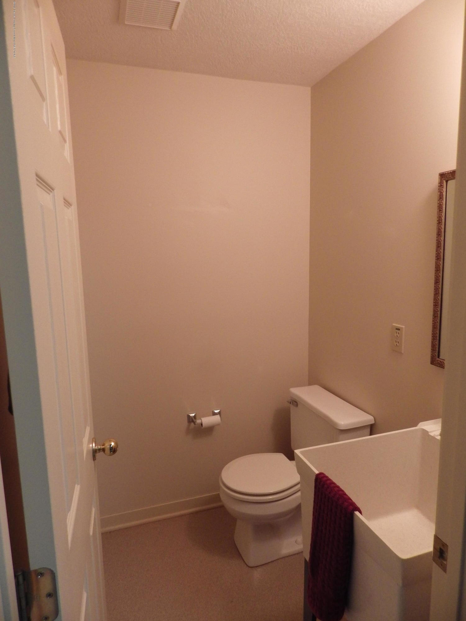 1007 Carlisle Cir - Basement Half Bath - 27