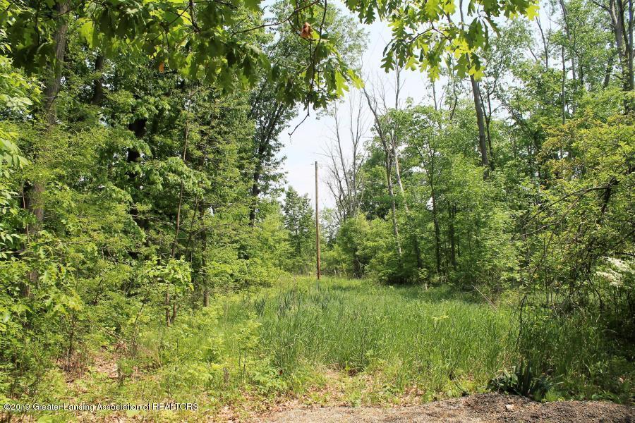 12895 Eaton Rapids Rd - Front lawn - 7