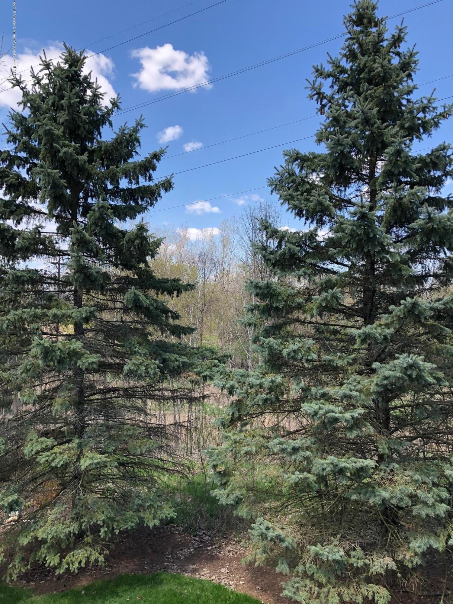 2364 Fieldstone Dr - backyard view - 24