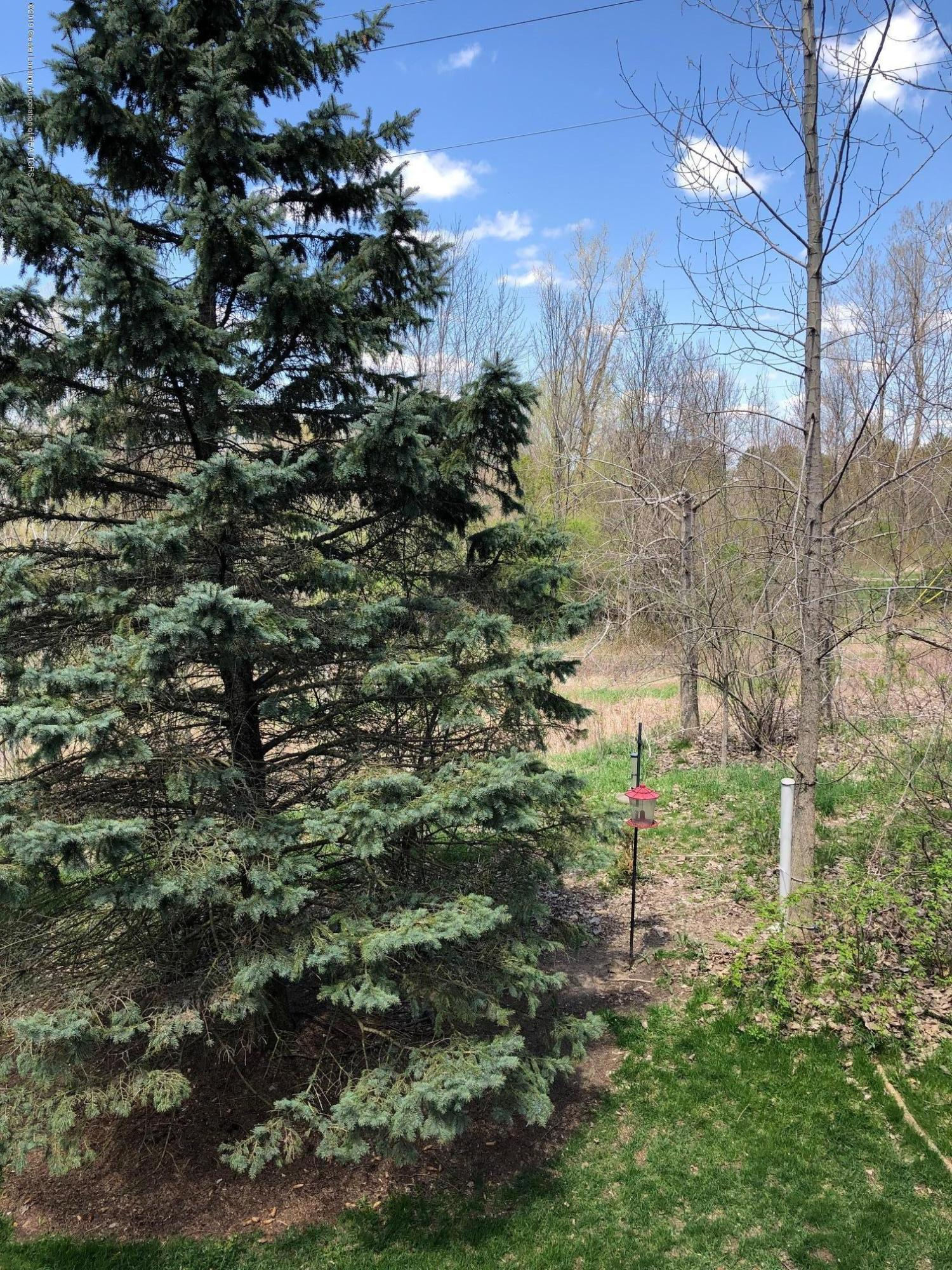 2364 Fieldstone Dr - backyard view - 25