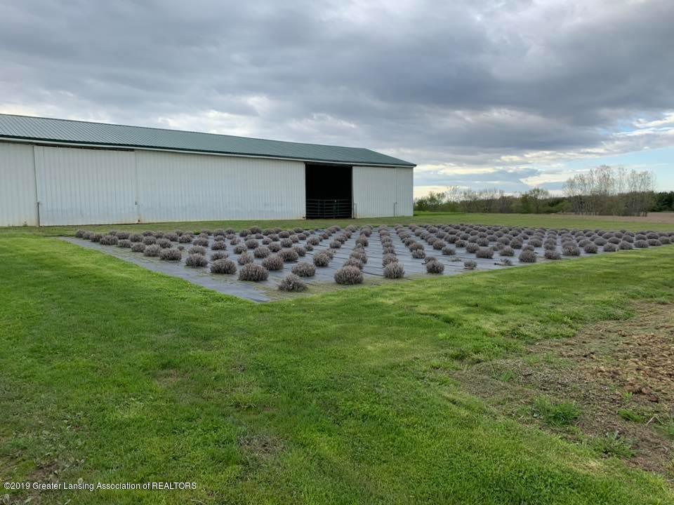 2834 S State Rd - Lavender Fields - 26