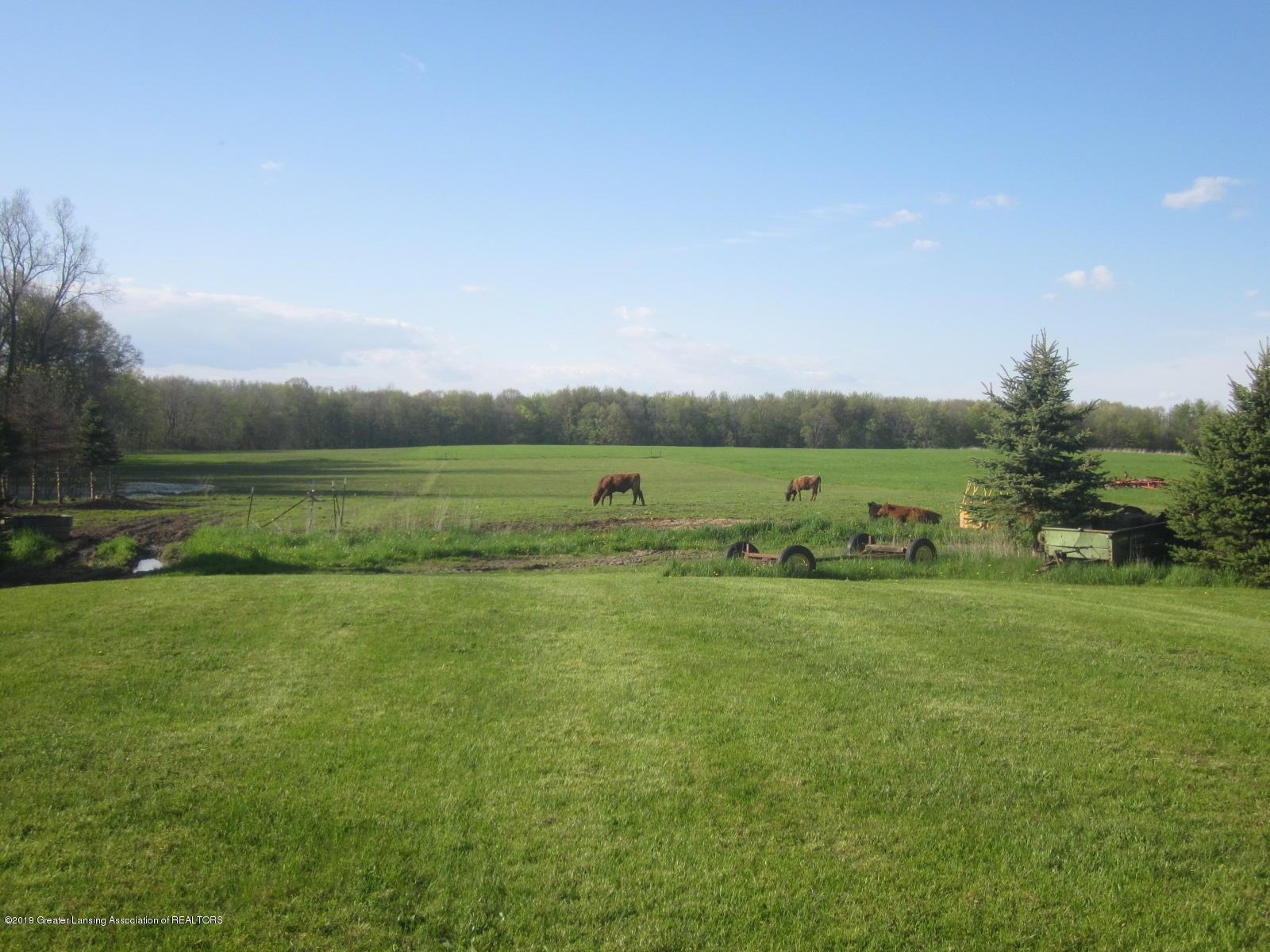 420 W Church Rd - Pasture - 24