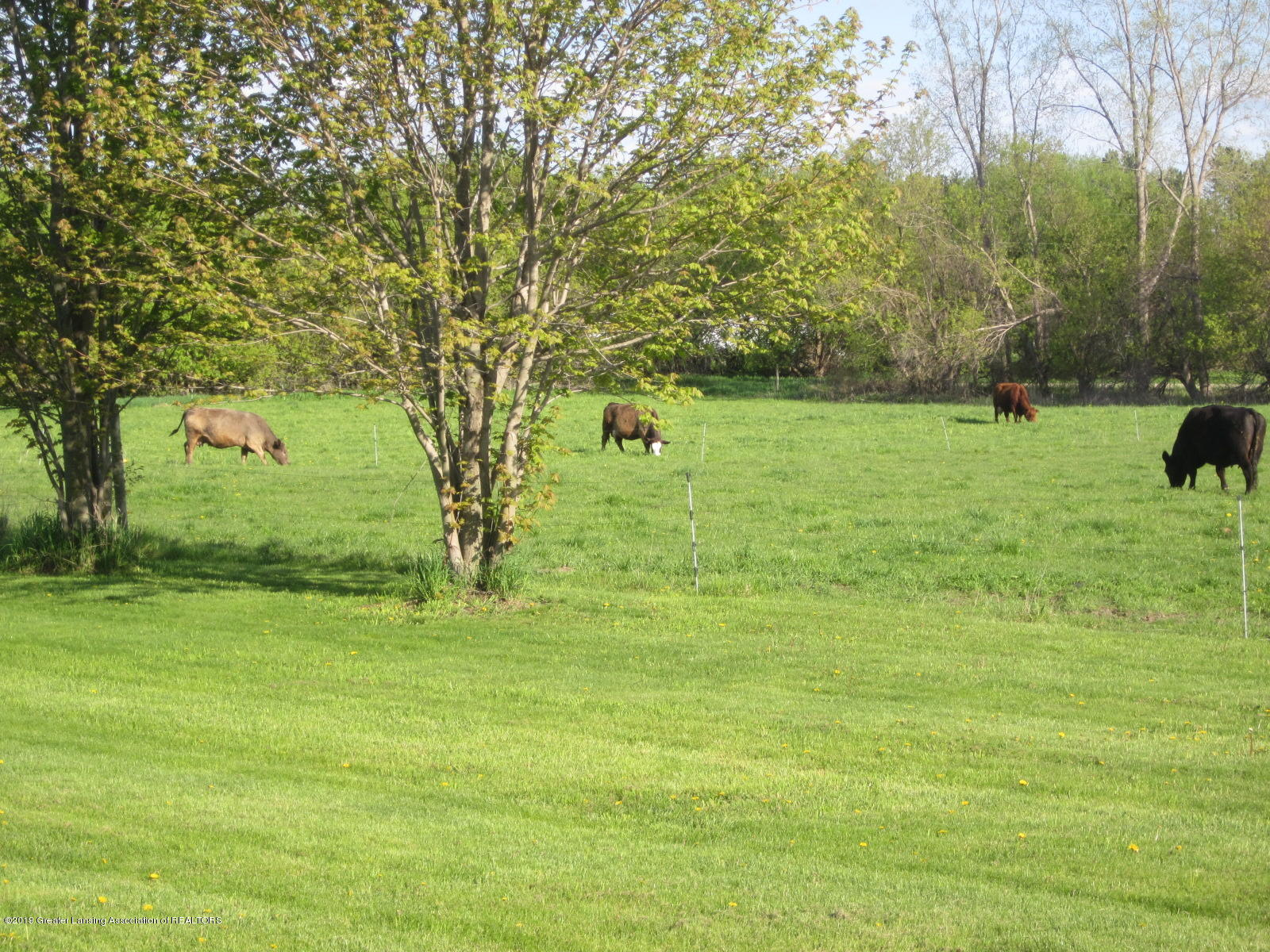 420 W Church Rd - Front Pasture - 26
