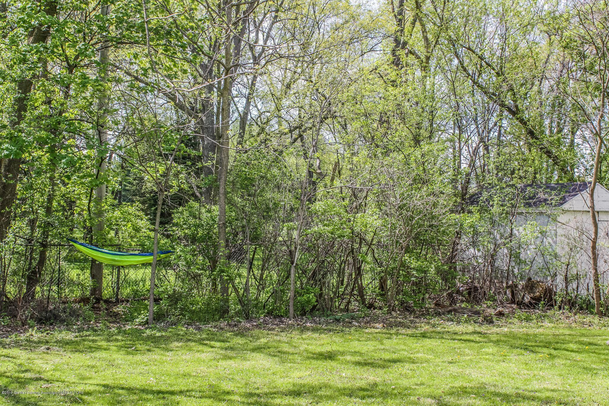 831 N Hagadorn Rd - Backyard - 16
