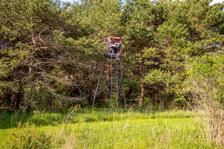 1227 E Dexter Trail - 1227 E Dexter Trail, Dansville, MI 48819 - 83