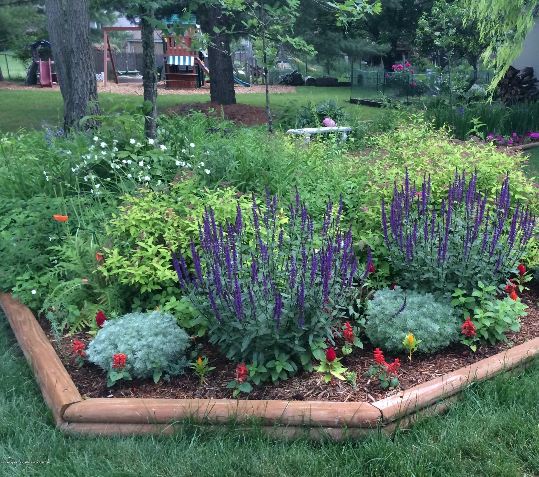 2393 Sower Blvd - Flower Garden in Bloom - 31