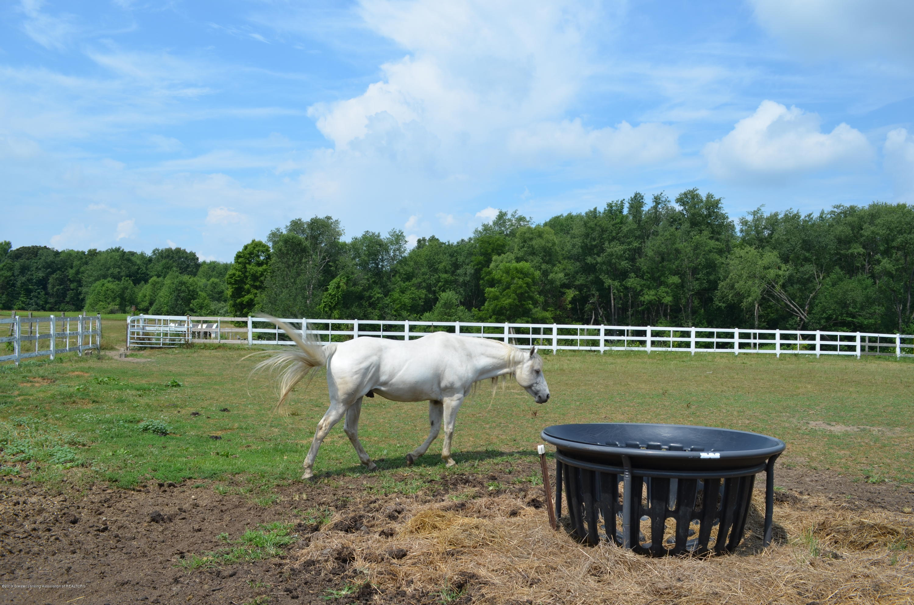 693 Grovenburg Rd - Riding Arena - 64