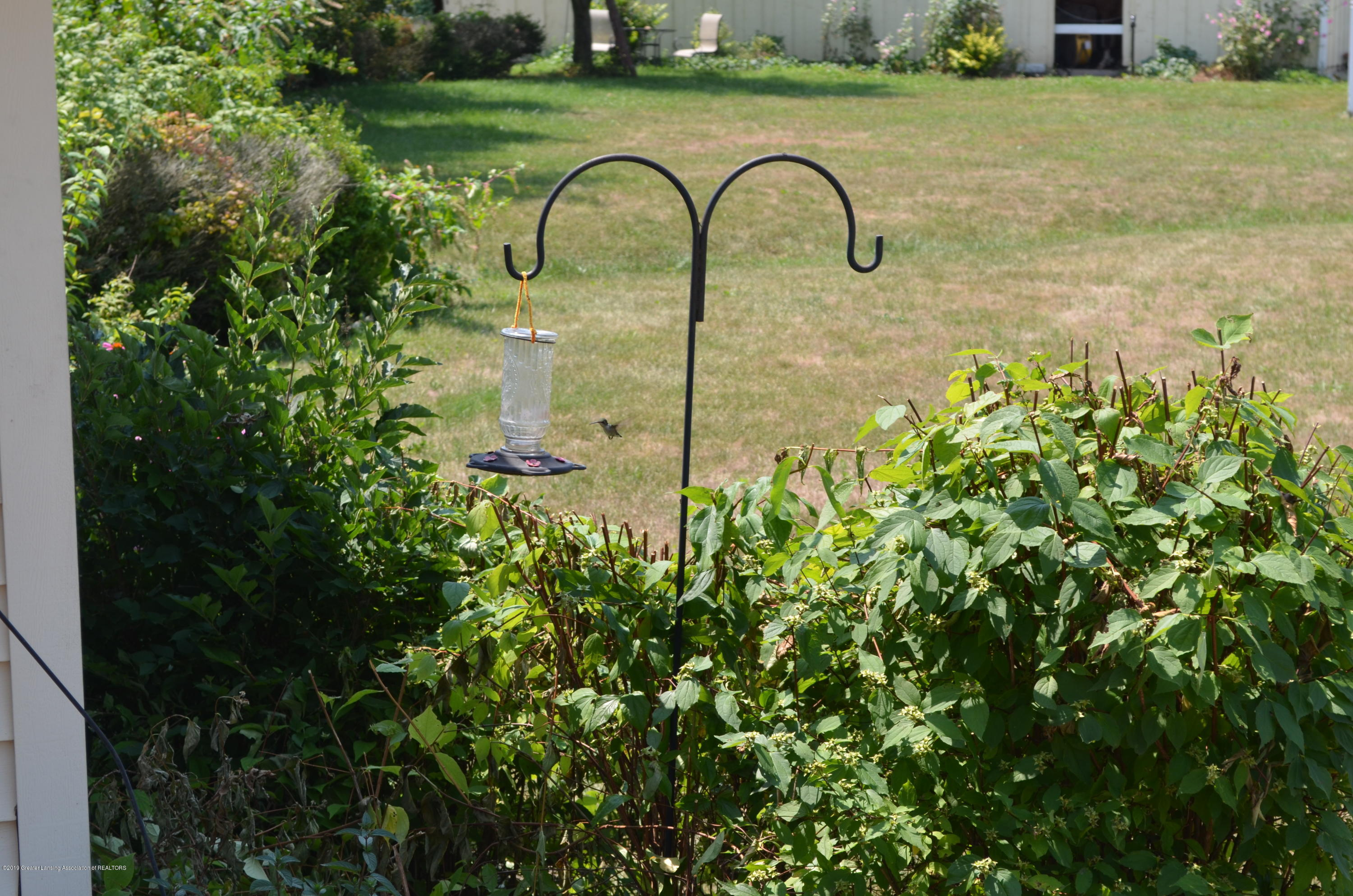 693 Grovenburg Rd - Hummingbirds - 70
