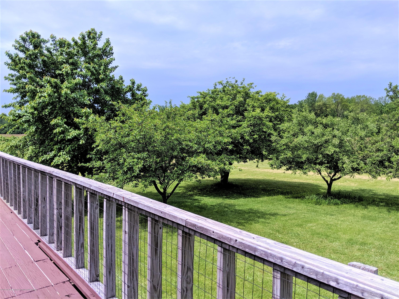 6111 S Morrice Rd - fruit trees - 9