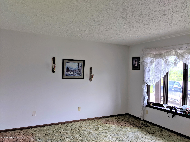 6111 S Morrice Rd - living room - 11