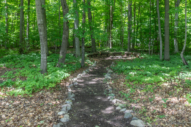 11443 Hidden Spring Trail - hiddenback5 (1 of 1) - 84