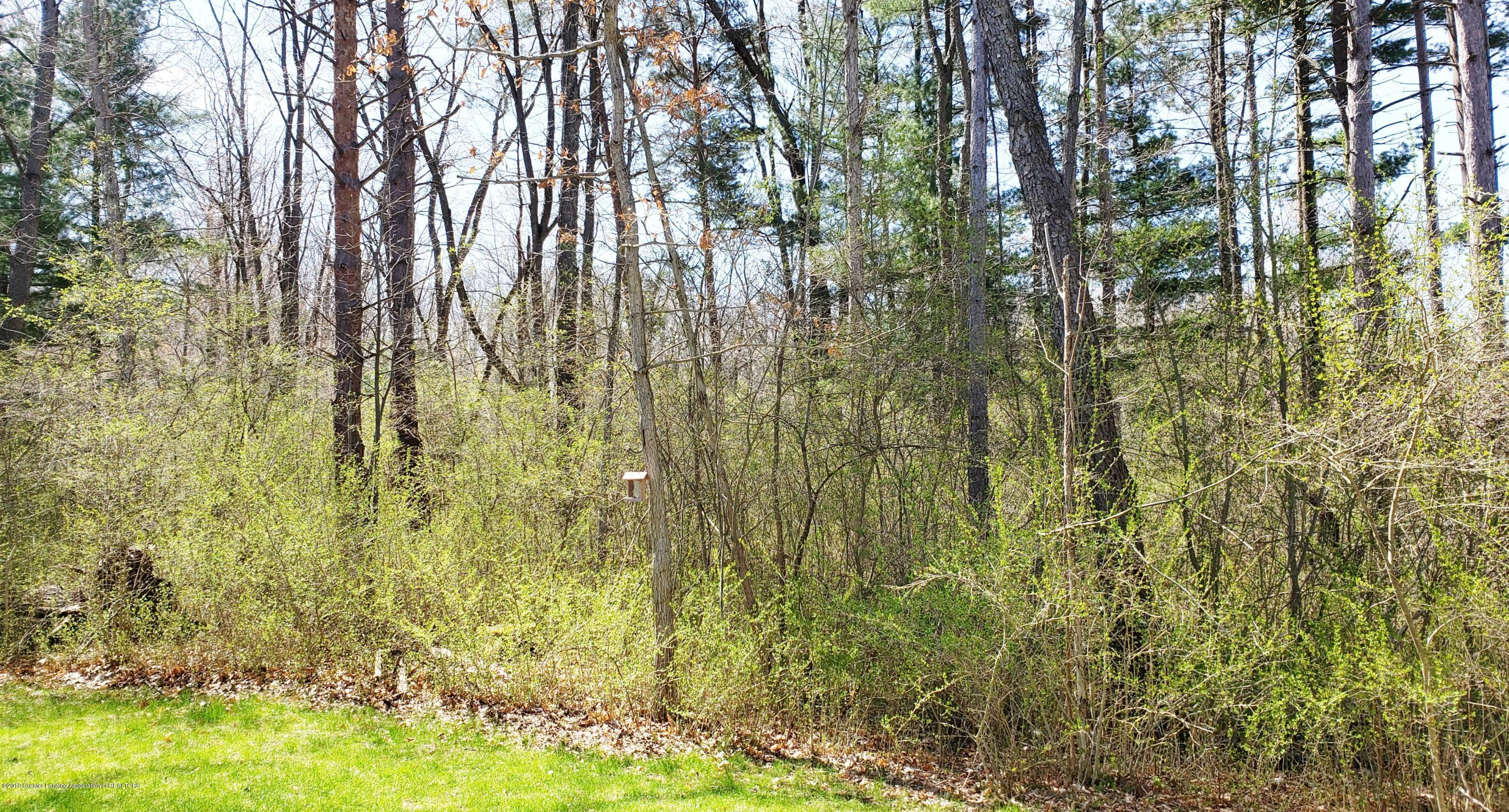 11677 Highland Ct - Woods Behind House - 29