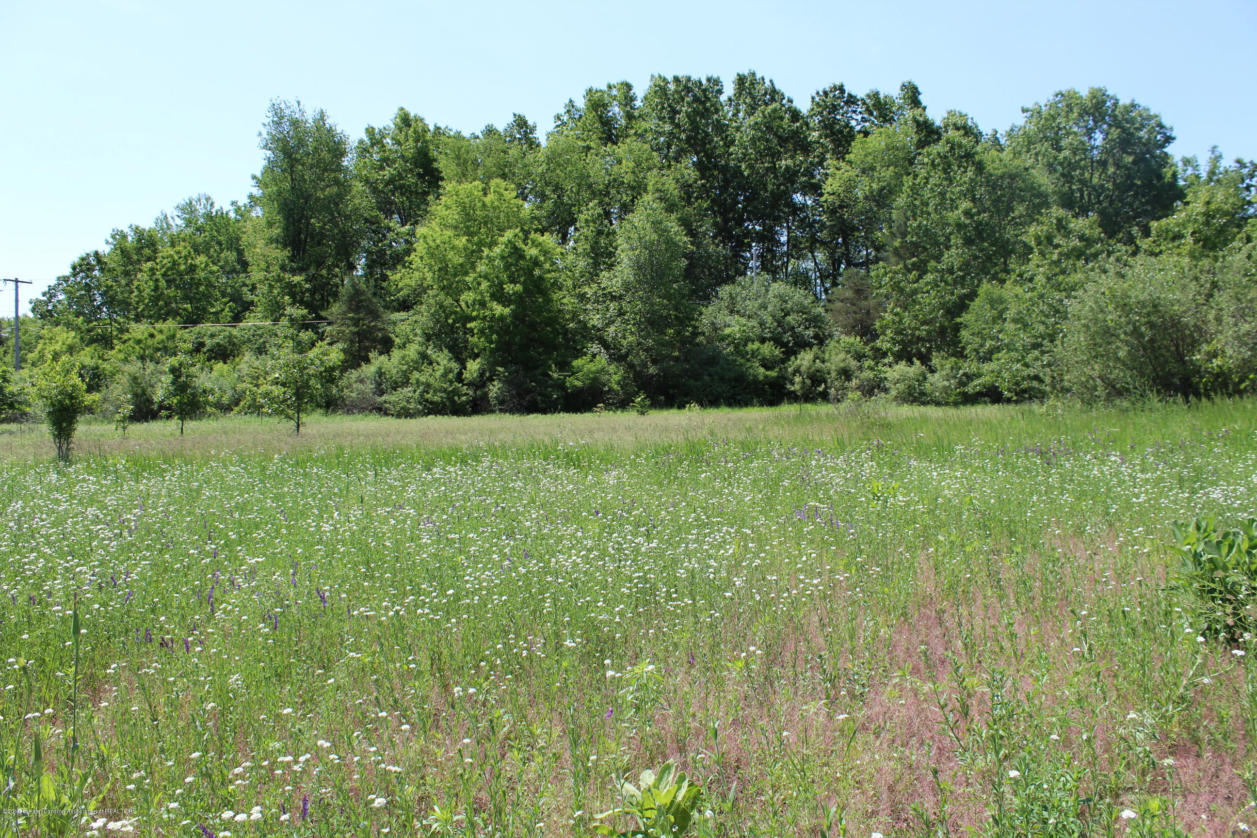 8500 Woodbury Rd - Scenic View - 54